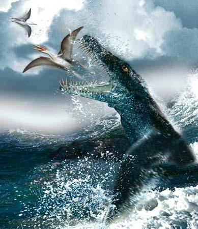 海洋爬行动物的化石