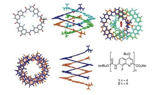 束螺旋的晶体结构